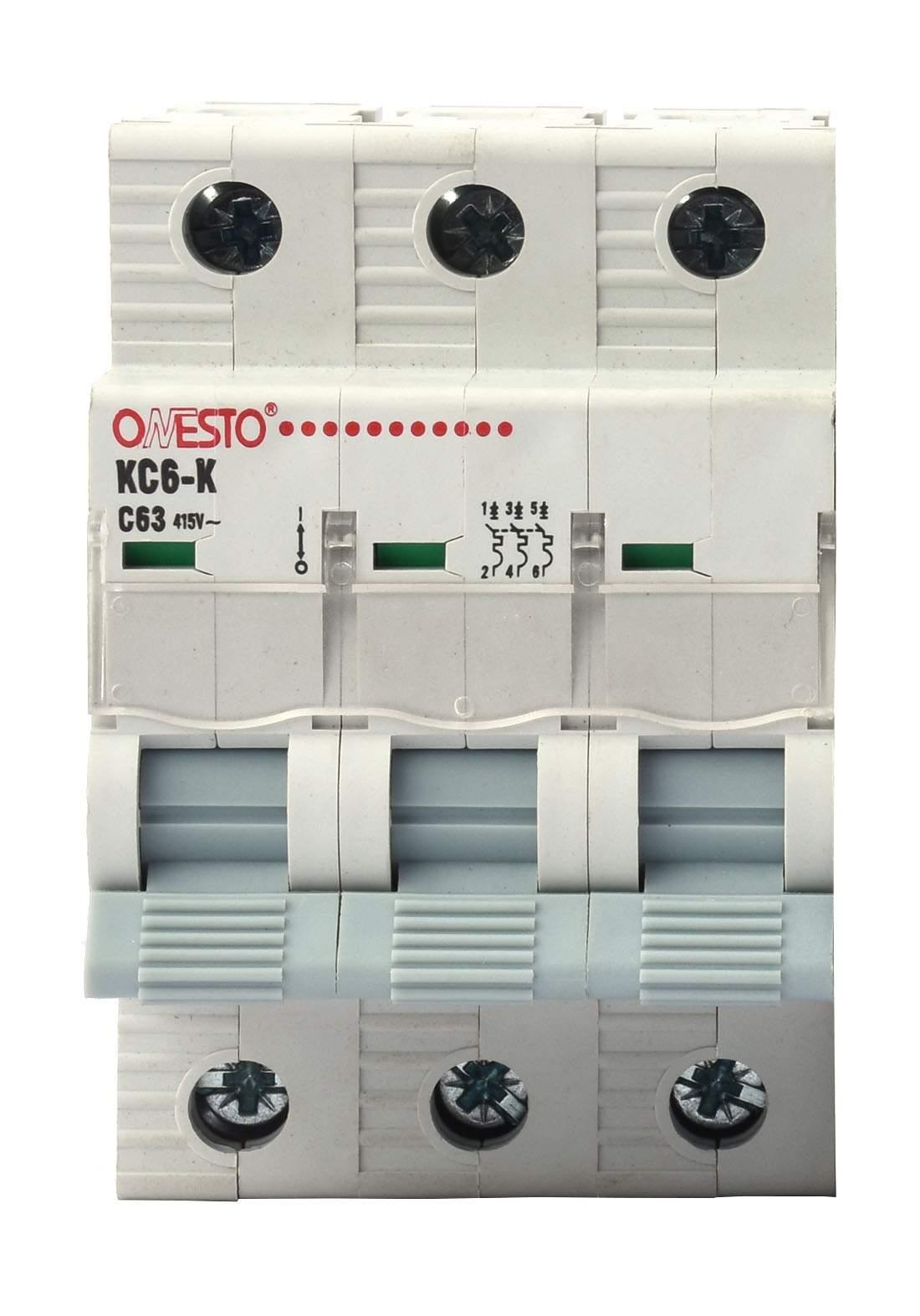 Raja Circuit Breaker 63 A قاطع تيار الكهرباء (جوزة)