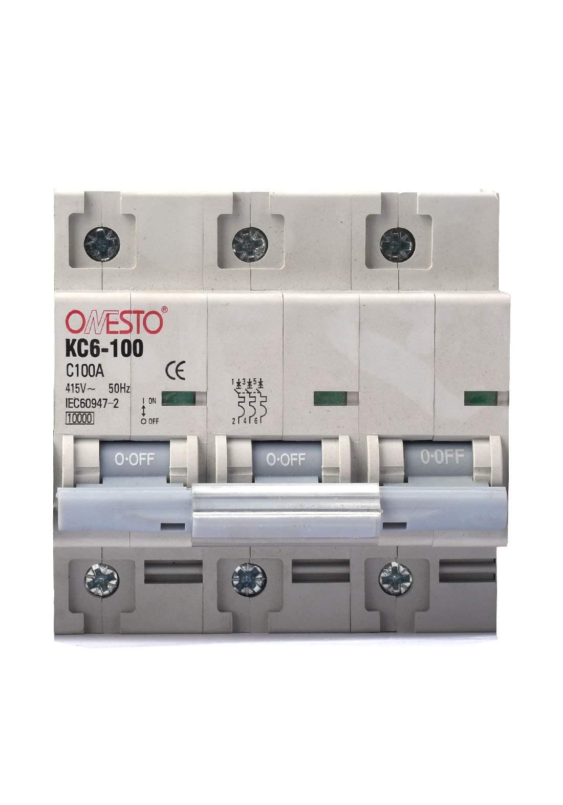 Raja Circuit Breaker 100 A قاطع تيار الكهرباء (جوزة)