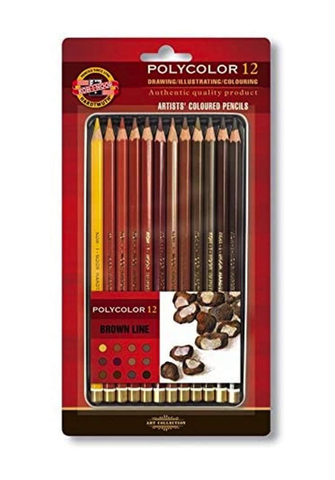Koh-I-Noor Polycolor 12 Artists Coloured Pencils 3822 ألوان باستيل خشبية  12 لون