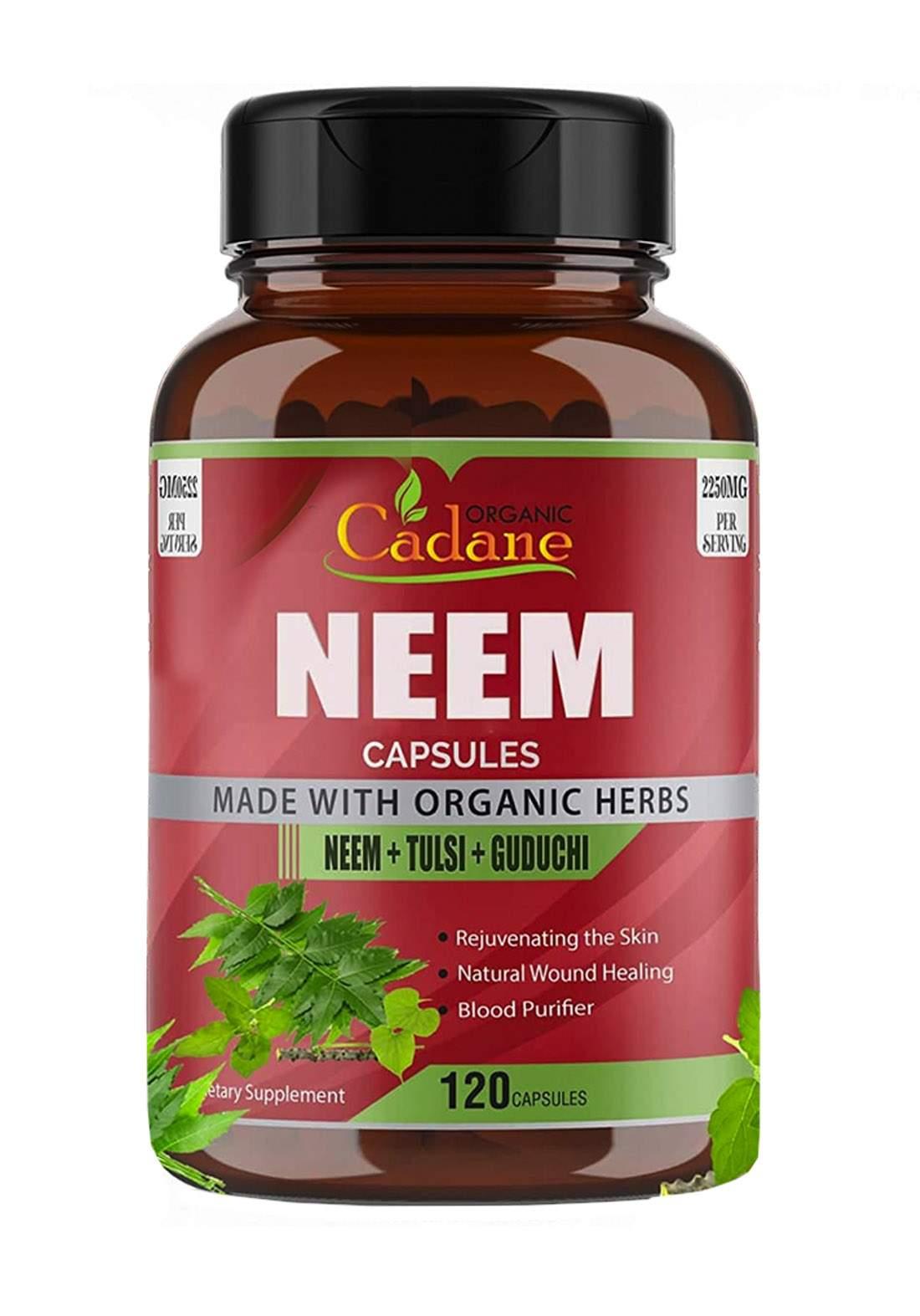 Organic Cadane Neem Leaf Powder Capsules 2250mg with Tulsi 120 Caps مكمل غذائي