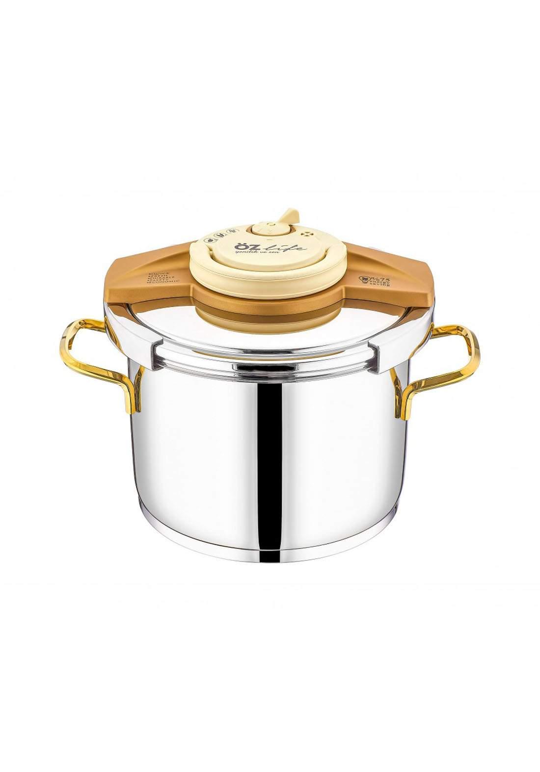 Ozlife Pressure Cooker Gold 2 Piece  قدر ضغط