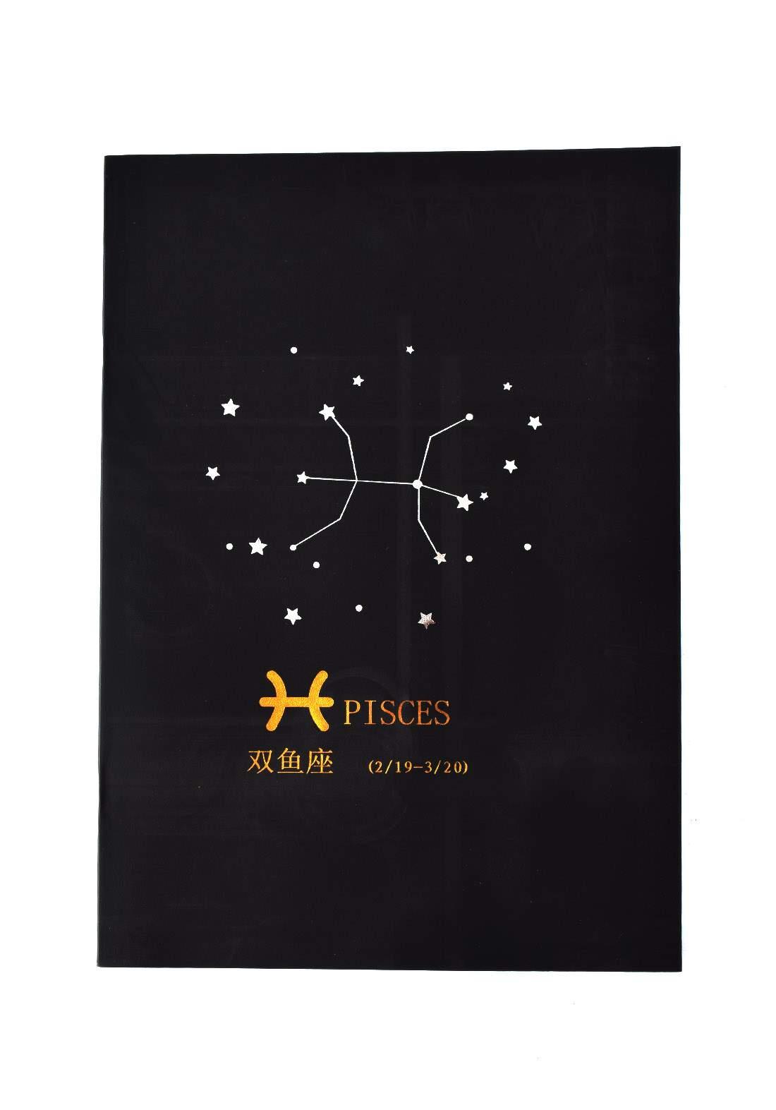 Big Black Drawing Book 24 Sheets-Pisces دفتر رسم اسود كبير بطبعة برج الحوت