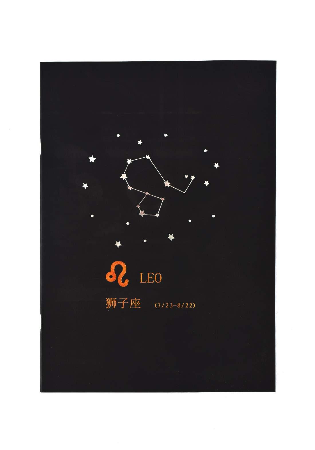 Big Black Drawing Book 24 Sheets-Leo دفتر رسم اسود كبير بطبعة برج الأسد